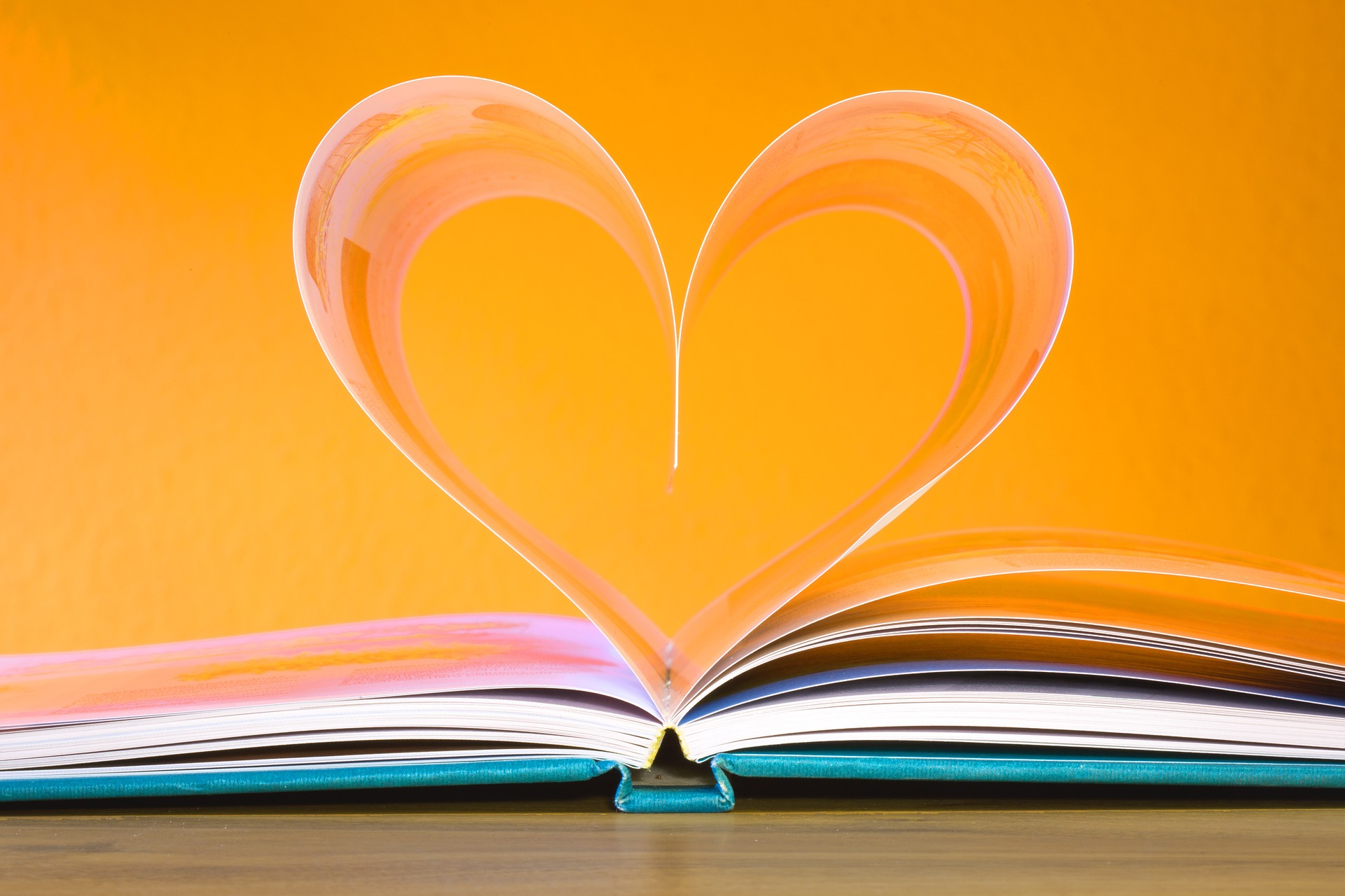 A book with it's pages forming a heart shape